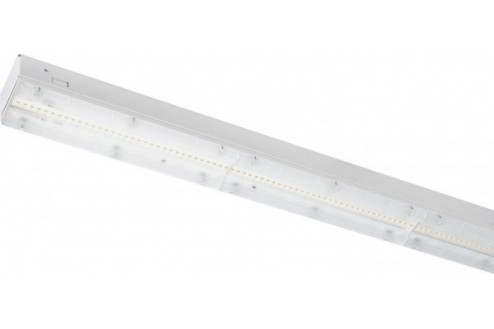 Shop LSW LED